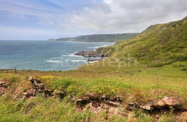 Devon coastline in spring Stock photo © andrewroland