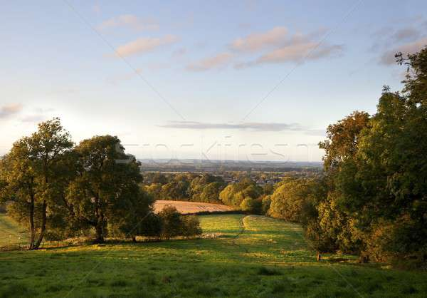 Stock photo: Rural Cotswolds