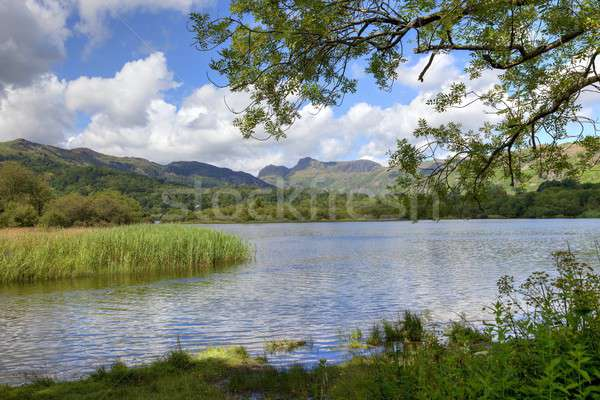 Lake district montagnes pique-nique randonnée Angleterre tourisme Photo stock © andrewroland