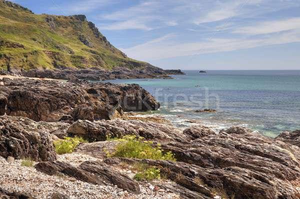 Devon Coastline in summer Stock photo © andrewroland