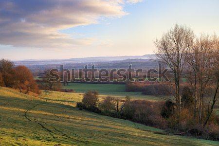 сельский английский пейзаж зима Восход Сток-фото © andrewroland