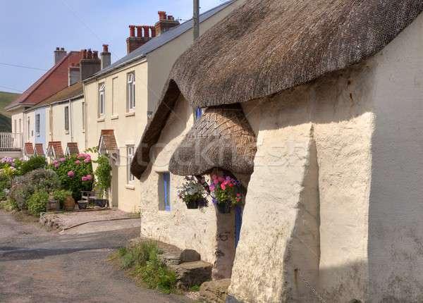 Thatched cottage, Devon Stock photo © andrewroland