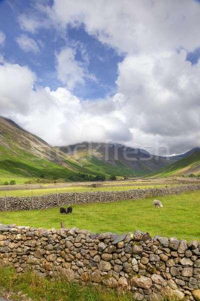 Wasdale Head, Cumbria Stock photo © andrewroland