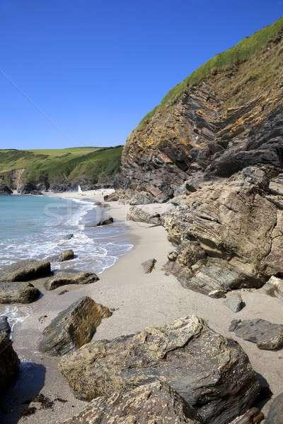 лет Корнуолл летнее время Англии пляж Сток-фото © andrewroland