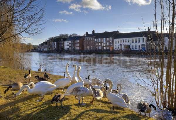 Bewdley, England Stock photo © andrewroland