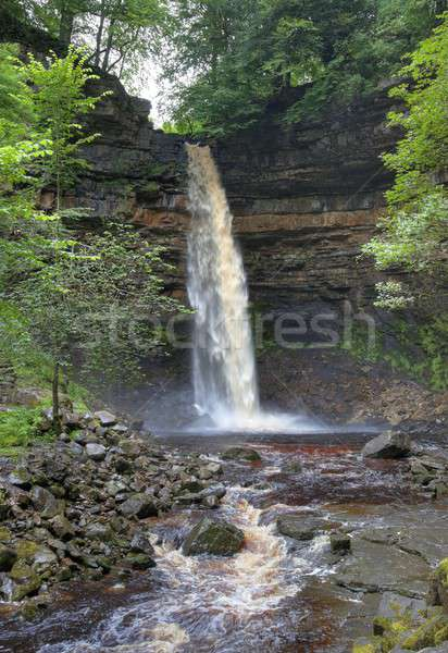 Yorkshire waterval park Engeland portret rivier Stockfoto © andrewroland