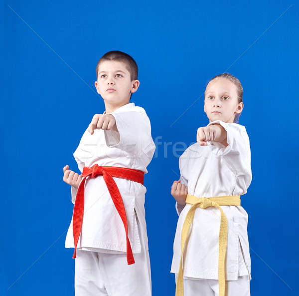 Boy and girl in karategi beats punch hand Stock photo © Andreyfire