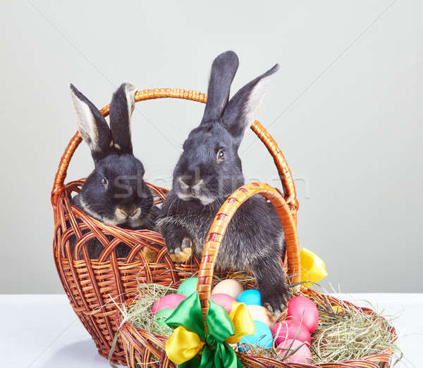 Rabbits and Easter basket with colored eggs Stock photo © Andreyfire