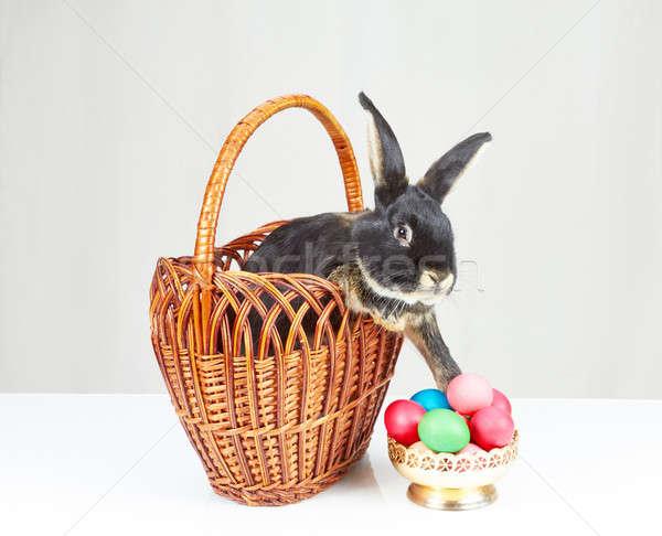 Panier noir lapin sur vase œufs de Pâques Photo stock © Andreyfire