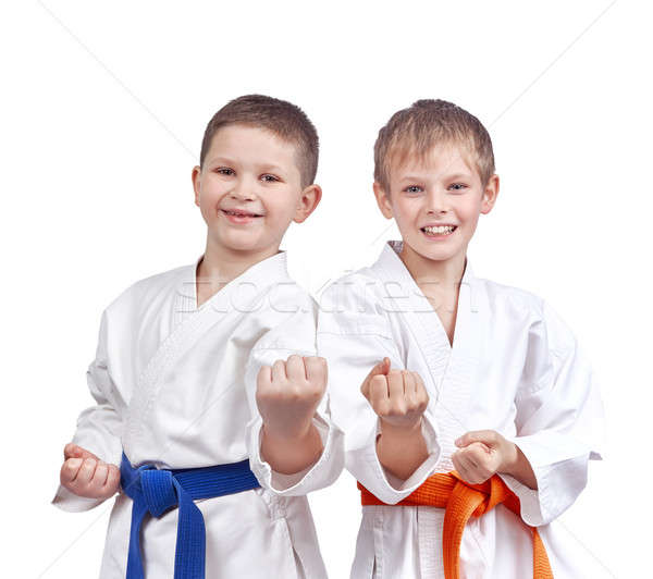 Two athletes doing karate technique  Stock photo © Andreyfire