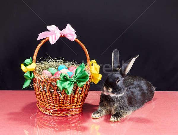Pâques panier oeufs peu lapin fille Photo stock © Andreyfire