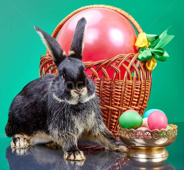 Сток-фото: мех · кролик · сидят · плетеный · корзины · ваза