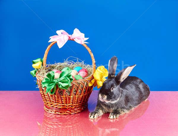 Stockfoto: Cute · bunny · Pasen · mand · meisje · kinderen