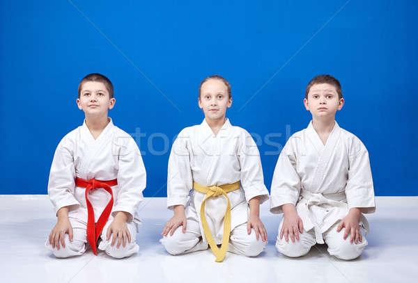 ül pozíciók karate lány egészség biztonság Stock fotó © Andreyfire