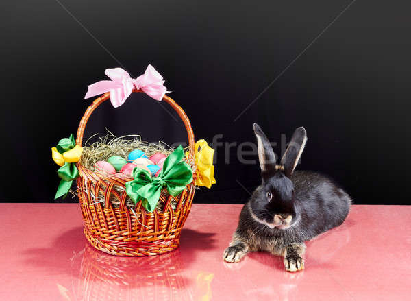 Easter basket with eggs and little rabbit Stock photo © Andreyfire