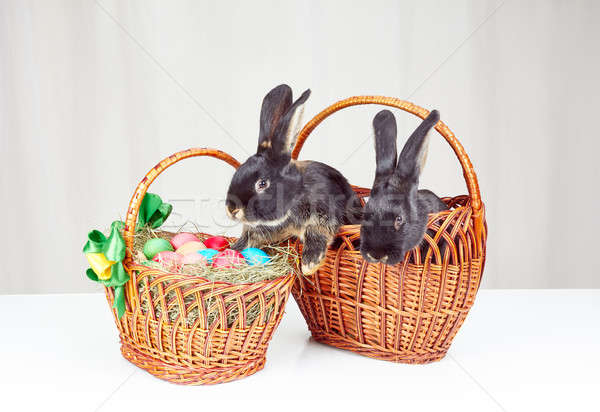 Easter basket and a basket with rabbits Stock photo © Andreyfire