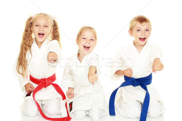 Young children with a smile in kimono sitting in a ritual pose karate punch arm Stock photo © Andreyfire