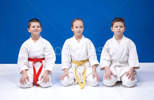 Fiatal sportolók pozíciók karate lány egészség Stock fotó © Andreyfire