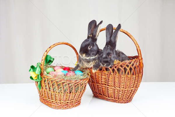 On a white background Easter basket and two easter bunny in a basket Stock photo © Andreyfire