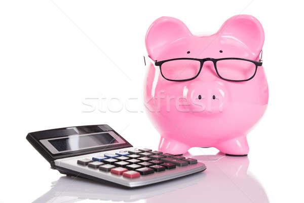 電卓 孤立した 白 眼鏡 豚 ストックフォト © AndreyPopov