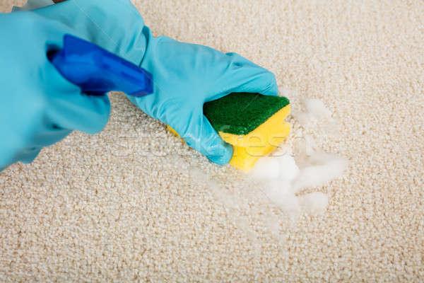 Stockfoto: Persoon · schoonmaken · tapijt · spons