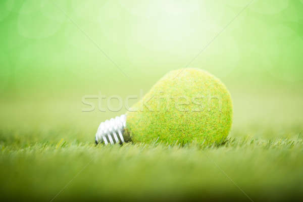 Light Bulb Placed On Grass Stock photo © AndreyPopov