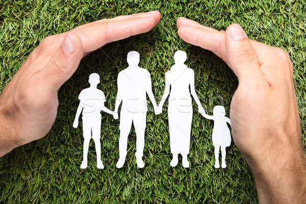 Businessman's Hands Covering Paper Family On Grass Stock photo © AndreyPopov