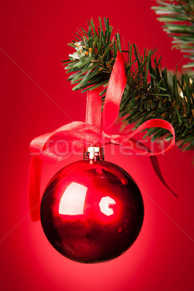 Red Bauble On Christmas Tree Stock photo © AndreyPopov