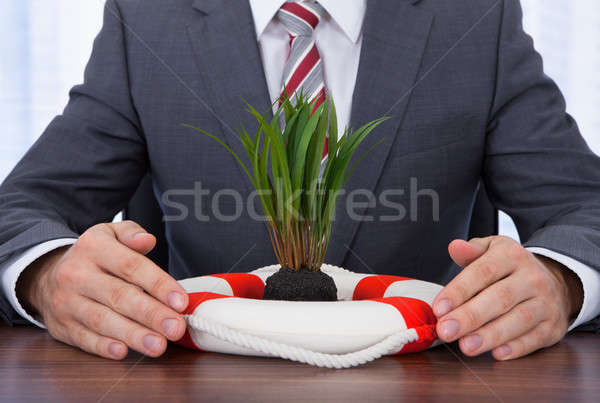 Businessman Protecting Saplings With Lifebuoy Stock photo © AndreyPopov