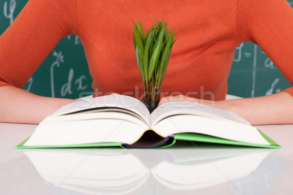 Student With Book And Sapling At Desk Stock photo © AndreyPopov