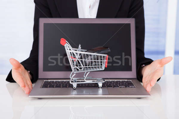Businesswoman With Shopping Cart Model And Laptop Stock photo © AndreyPopov