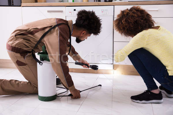 Pest Control Worker With Torch Spraying Pesticide Stock photo © AndreyPopov
