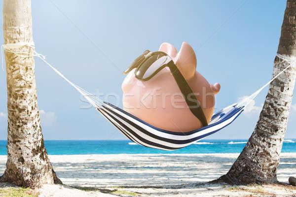 Rosa Sparschwein entspannenden Hängematte tragen Sonnenbrillen Stock foto © AndreyPopov