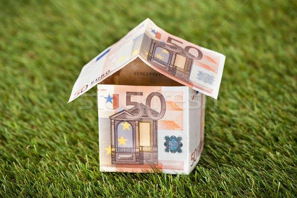 Ház Euro pénz füves föld közelkép Stock fotó © AndreyPopov