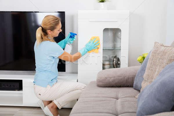 Nő spray üveg ruha tiszta ház Stock fotó © AndreyPopov