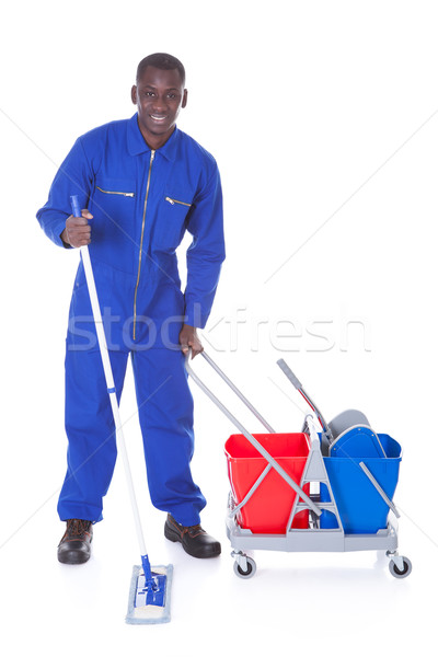 Cleaner Cleaning With Mop Stock photo © AndreyPopov