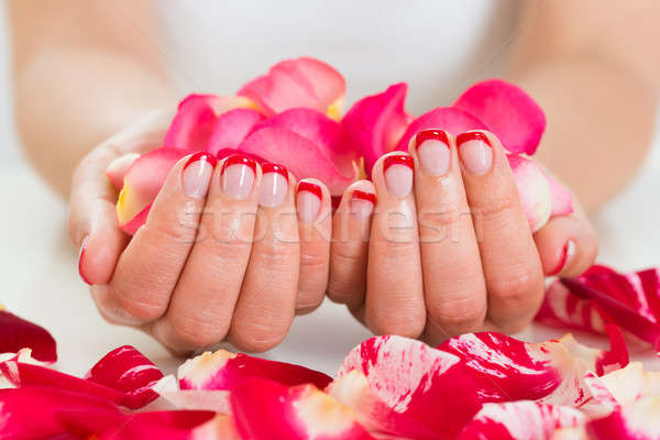 Female Hands With Nail Varnish Holding Rose Petals Stock photo © AndreyPopov