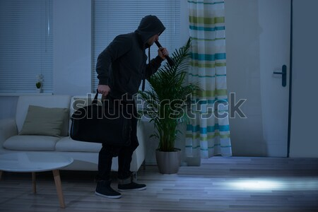 Burglar Walking With Handbag After Stealing From House Stock photo © AndreyPopov