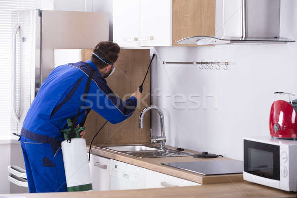 Pest Control Worker Spraying Pesticide In Kitchen Stock photo © AndreyPopov