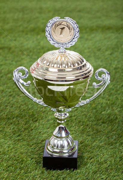 Shiny Championship Trophy On Pitch Stock photo © AndreyPopov