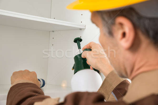 Pest Control Worker Spraying Pesticides Stock photo © AndreyPopov