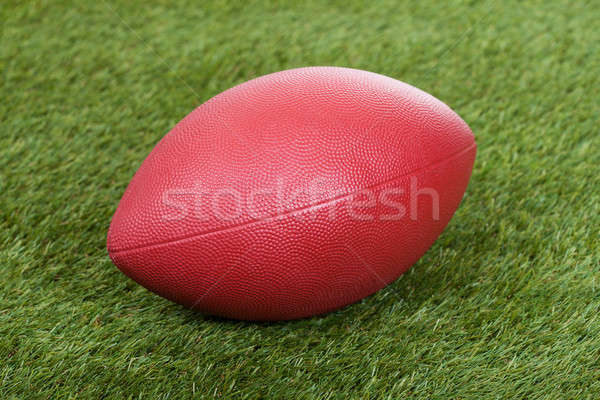 Rugby Ball On Field Stock photo © AndreyPopov