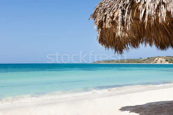 Sunshade At Beach With Ocean View Stock photo © AndreyPopov