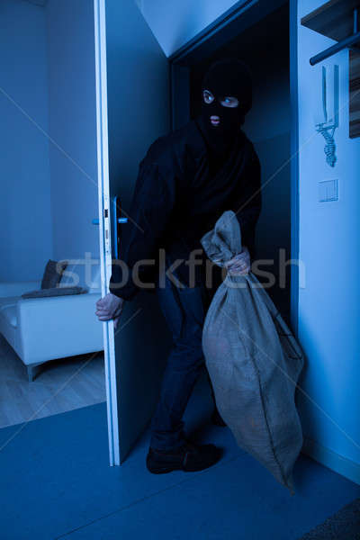 Thief Carrying Sack While Exiting House Stock photo © AndreyPopov