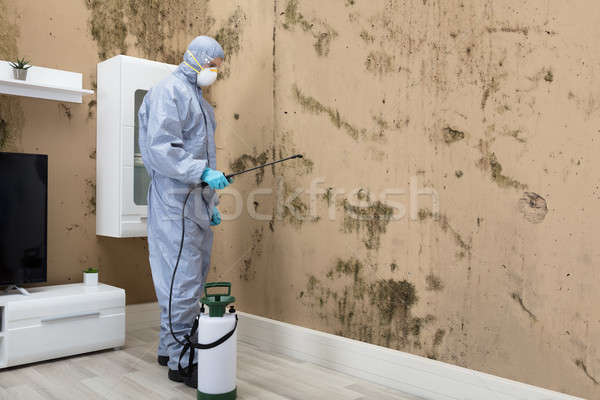 Pest Control Worker Spraying Pesticide On Wall Stock photo © AndreyPopov