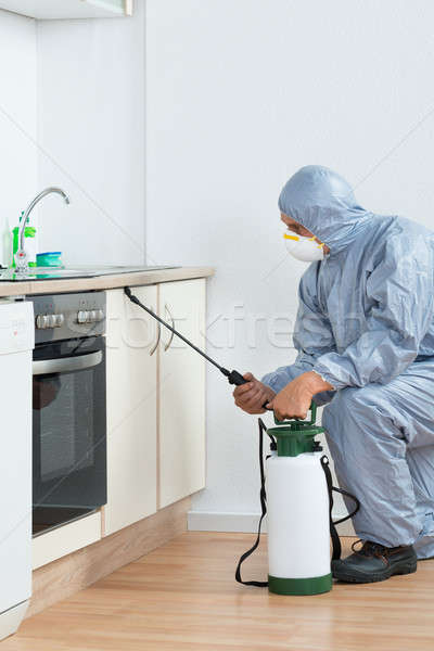 Exterminator Spraying Pesticide On Wooden Cabinet Stock photo © AndreyPopov