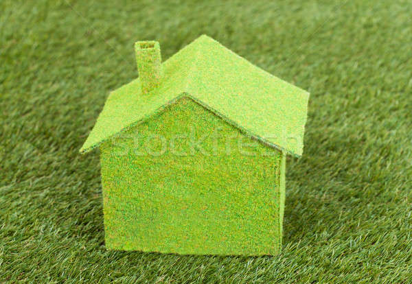 Vert écologique maison herbe verte famille Photo stock © AndreyPopov