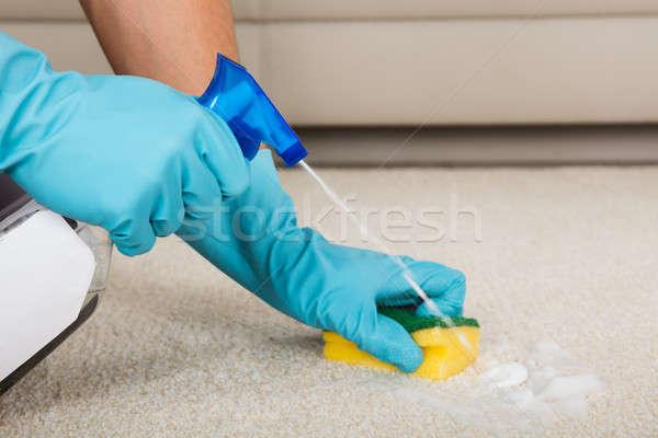 Személy takarítás szőnyeg mosószer spray üveg Stock fotó © AndreyPopov