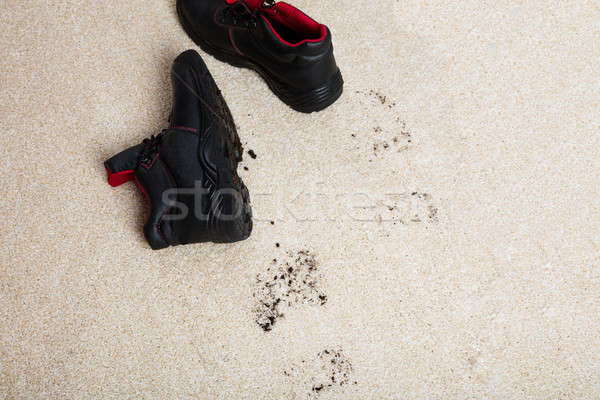 Pair Of Shoes With Mud On Carpet Floor Stock photo © AndreyPopov