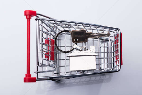 Elevated View Of Shopping Cart And House Key Stock photo © AndreyPopov